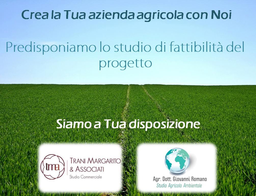 Crea la tua impresa agricola studio tma trani for Crea la tua planimetria gratis